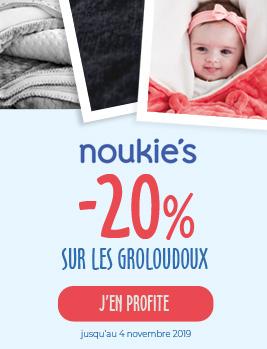 20-sur-les-groloudoux-noukies